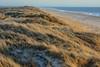 Henne Strand (Frau_Anna) Tags: ocean vacation holiday beach strand denmark sand meer wasser sonnenuntergang view urlaub aussicht dänemark nordsee dünen northsee hennestrand