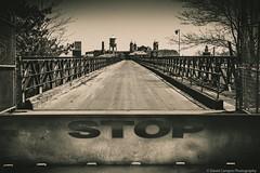 2016, april, elis Island, Landscape, Liberty state park, New Jersey.jpg (David Campos Photography) Tags: landscape newjersey april libertystatepark 2016 elisisland