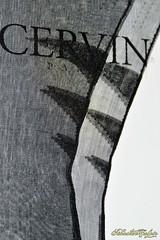 DSC_0877 (Copier) (sebastien colpin) Tags: lingerie bas couture nylon cervin