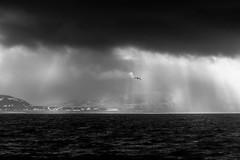 Johanoson Livinston Seagull I presume... (Glen Sumner Photography) Tags: ocean sea blackandwhite cloud sun seascape bird nature wet water monochrome iceland ray seagull gull shore dramaticsky godrays