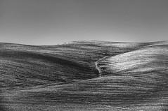 Parting (Nora Bo) Tags: bw italy nikon minimal hills tuscany hairwaves