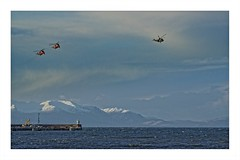 fly by sea king Troon (thedickieburd) Tags: flyby troon seaking dearchandrescue
