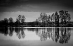 reflection b&w (matwolf) Tags: trees blackandwhite bw reflection tree water clouds reflections landscape see blackwhite wasser wolken lac arbres nuage landschaft bume arbre blanc reflektion reflektionen