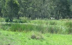 L11 Elliots Rd, Myrtle Creek NSW