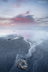 Veins (Steve Clasper) Tags: uk beach sunrise north east coastal northern northeast formations middleton hartlepool seacoal steveclasper