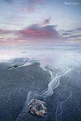Veins (Steve Clasper) Tags: uk beach sunrise north east coastal northern northeast formations middleton hartlepool seacoal steveclasper