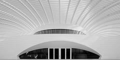 Spaceship 2 (josesuro) Tags: longexposure bw architecture digital florida fineart lakeland 2015 leebigstopper afsnikkor1835mmf3545ged jaspcphotography nikond750