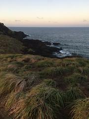 IMG_3514 (elleica) Tags: summer vacation beach islands whitebeach daet camarinesnorte calaguasislands