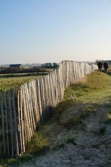 clture (majolie46) Tags: mer dunes sable promenade sentier clture borddemer protectiondunes