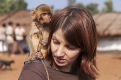 Babli (wietsej) Tags: india monkey sony tribal hills jungle 1750 tamron a100 babli chhattisgarh bhoramdeo baiga maikal