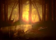 Magical morning. (BirgittaSjostedt.- AFK, back Feb 15) Tags: sun art texture water yellow forest sunrise river landscape paint unique magic deer fantasy mysterious ie netart artdigital innamoramento magicunicornverybest birgittasjostedt
