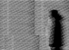 P3540252a urban  vision  !! (gpaolini50) Tags: city portrait people urban blackandwhite bw photography photo cityscape photographic explore photoaday bianconero emotive biancoenero urbanscape emozioni photoday profili explora photographis explored esplora pretesti phothograpia