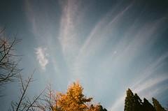 (photoCKD) Tags: blue sky cloud mountain january hsinchu taiwan    2016  ricohgr21 fujicolornatura1600