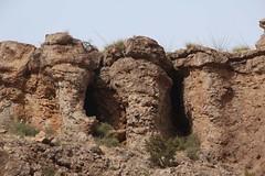 Volcanic columns; E of Redington, AZ (Lon&Queta) Tags: arizona usa mountains landscapes desert unitedstatesofamerica gps 2014 panoramio grahamcounty galiuromountains sanpedrorivervalley