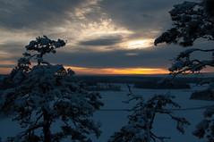 Winter Sunset (talaakso) Tags: winter sunset sky clouds suomi finland vinter talvi hyvinkää solnedgång winterlandscape moln auringonlasku kytäjä jaanankallio talvimaisema terolaakso talaakso pilvat