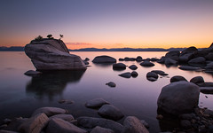 Shores of Tahoe [Explore 02/11/16] (Joe Parks) Tags: sunset lake beach water rock twilight dusk nevada tahoe laketahoe sierra boulders bonsai serene sierras reno canon6d bonsairock parksjd