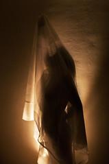 Under the veil (Rand0mmehere) Tags: light shadow portrait orange woman selfportrait black girl silhouette yellow female self pose dance warm veil arm under linnea independent albrechtsson rand0mmehere