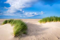 Gotska sandn (andreassofus) Tags: travel summer seascape beach nature grass canon landscape island sweden summertime gotland travelphotography gotskasandn