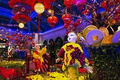 Bellagio_Chinese New Year (Swallia23) Tags: las vegas flowers money hotel peach chinesenewyear casio nv bellagio yearofthemonkey 2016 conservatorybotanicalgarden