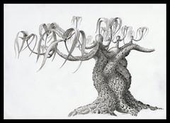 Tree (Karwik) Tags: tree pencil pencils drawing palm fantasy palma drzewo owek rysunek olowek