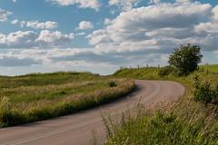 Kurvige Landstrasse-Curvy Highway (Jutta M. Jenning) Tags: sommer strasse natur wiese wiesen himmel wolken blumen polen landschaft baum baeume weg wege kurve landsape bluete huegel strassen bluehen fahrbahn kurvig strasen strase fahrbahnen huegelig