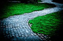 The Path (Orbmiser) Tags: winter grass stone oregon portland nikon path d90 55200vr