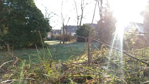 Evang. Friedhof, Selzen