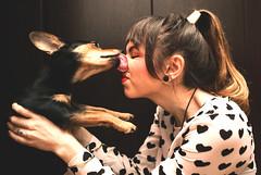 My Funny Valentine (Vegas Mellor) Tags: family light portrait dog love animal puppy hearts kiss sweet lick doggy valentinesday unconditionallove myfunnyvalentine bemyvalentine
