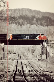 Escarpment Railway Portrait