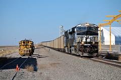 BNSF Tamora, NE (jtrainb) Tags: train nebraska railway transportation locomotive bnsf tamora norfolksouthern gevo