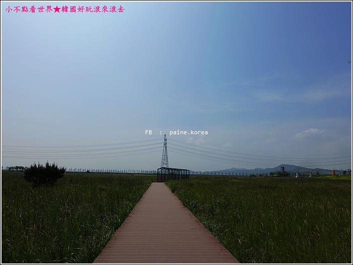 大阜島海邊香氣公園 (21).JPG