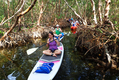 3_5_16 Kayak Paddleboard Tour Sarasota FL 02