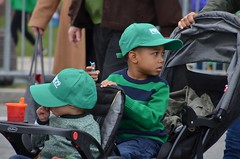 Philly St. Patrick's Day Parade 2016 - 1 (43)