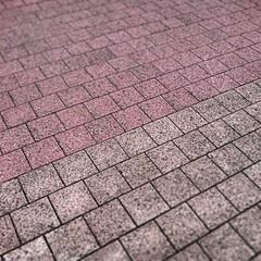 RoodWitFiets (WilTrap) Tags: texture lines outdoor pavement bikelane fietspad vaart
