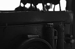 FUJIFILM X-Pro1 (conalog) Tags: macro model sp di if fujifilm af tamron f28 xr ld a09 aspherical 2875mm xpro1
