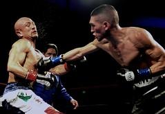 GBO Boxing - Adam Fiel vs Manuel Romero (chris akins) Tags: california sport photography fight nikon fighter action champion richmond ring bayarea boxer punch boxing f28 sportsphotography d600 richmondcalifornia nikond600 gboboxing