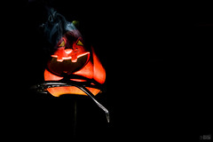 You don't scare me !! (happad fotografie) Tags: orange black green halloween blackbackground bright colorfull smoke flash spooky scare lowkey incense sharethehappiness sharethehappines