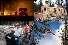 Wildfire Efforts Collage (CA Dept of Insurance) Tags: fire enforcement wildfire disasters calfire firesafecouncil