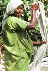 Calicut dhobi woman (bokage) Tags: street india dress kerala dhobi calicut kozhikode bokage