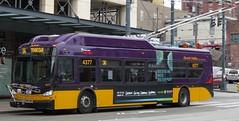 King County Metro 2015 New Flyer XT40 4377 (zargoman) Tags: seattle county travel bus electric king metro trolley transportation transit kiepe elektrik kingcountymetro newflyer lowfloor xcelsior