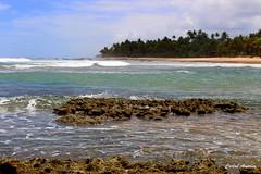Cores de Mara (Carlos Amorim (Camorim10)) Tags: praia gua brasil cores de mar bahia fora mara pennsula taipu