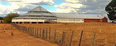 Deeargee Woolshed (Darren Schiller) Tags: uralla newengland newsouthwales gostwyck woolshed deeargee architecture rural shed farming wow