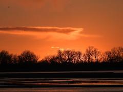 Sunset, March 16 (aurospio) Tags: sunset nebraska cranes sandhillcranes platteriver
