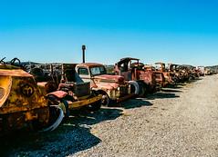 Line Up (LXG_Photos) Tags: abandoned mac rust campo trucks eos3 motortransportmuseum ektar100