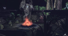 The Fire....The Soul Of The Tribe (instinct.primal) Tags: camp creek fire jungle fallen tribe mamba savage roleplay gorean jangka