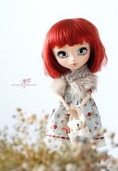 Rose (Mikiyochii) Tags: doll dolls groove pullip fashiondoll pullips pullipdoll customdoll pullipcustom pullipfullcustom pullipfc