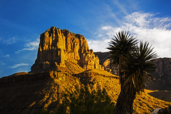 _40A3221 (ChefeGrande) Tags: park camping sky silhouette clouds sunrise landscape texas outdoor hiking granite westtexas elcapitan chihuahuandesert guadalupemountainnationalpark soaptreeyucca guadalupemountain