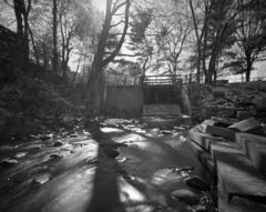 T-022, Pinhole Cooke's Hollow (rbrazile) Tags: pinhole wppd d7611 fujineopanacros100 pinwide wanderlusttravelwide