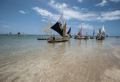 Brazil - Porto de Galinhas (Nailton Barbosa) Tags: brazil praia beach brasil de mar nikon bresil brasilien ne porto pescado pe pernambuco brasile jangadas oceano nordeste brsil pescadores jangada galinhas jangadeiro ipojuca d80