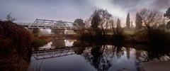 Serene Morning (Torkn2U) Tags: au australia newsouthwales bendemeer